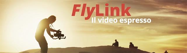 FlyLink